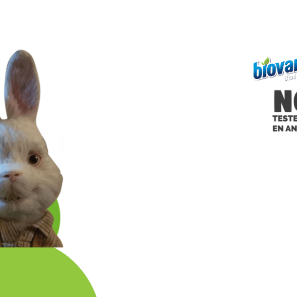 Conejo Ralph_Biovarsol_Multinsa_No testea Animales
